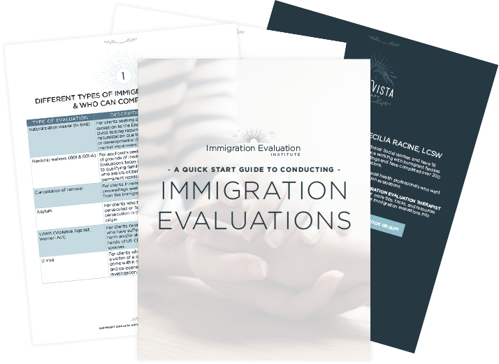 A quick start guide to conducting immigration evaluations